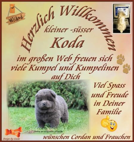 An den Beitrag angehängtes Bild: https://cordan-vom-fliederberg.beepworld.de/files/0-koda.jpg