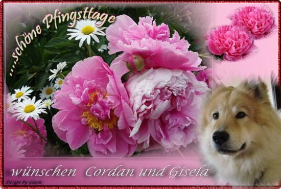 An den Beitrag angehängtes Bild: http://cordan-vom-fliederberg.beepworld.de/files/c-pfingsten--.jpg