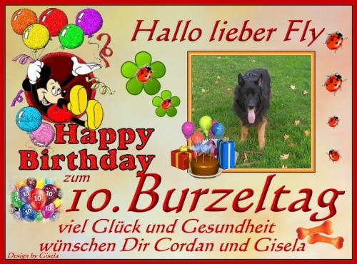 An den Beitrag angehängtes Bild: http://cordan-vom-fliederberg.beepworld.de/files/geb.fly------.jpg