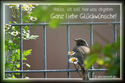 An den Beitrag angehängtes Bild: http://cordan-vom-fliederberg.beepworld.de/files/h10047-tier-geburtstag_27288_0_27288_0.jpg